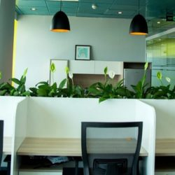 A-Co-working-Space-with-Private-office-space-How-do-your-choose-2